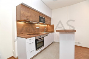 Pronájem bytu 3+kk, 59 m² Praha - Karlín, Nekvasilova